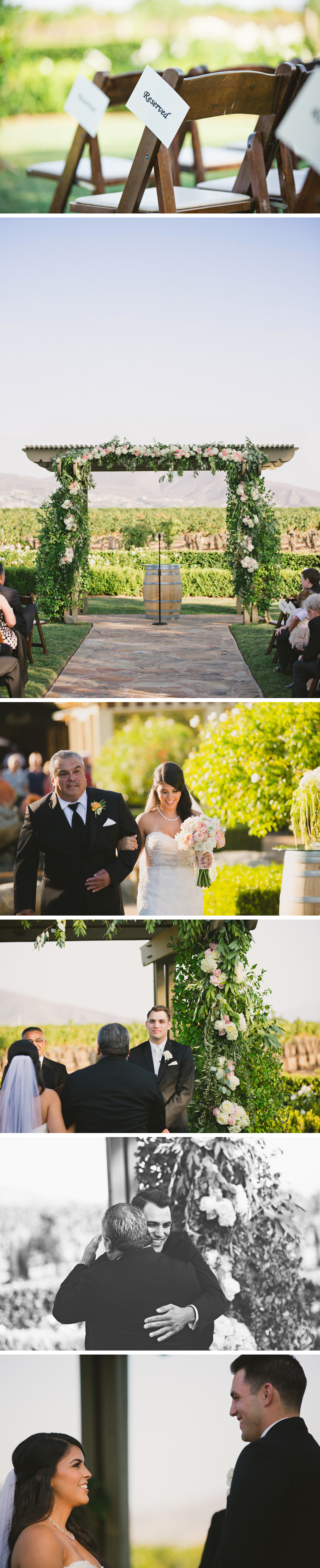 ponte-wedding-photos8