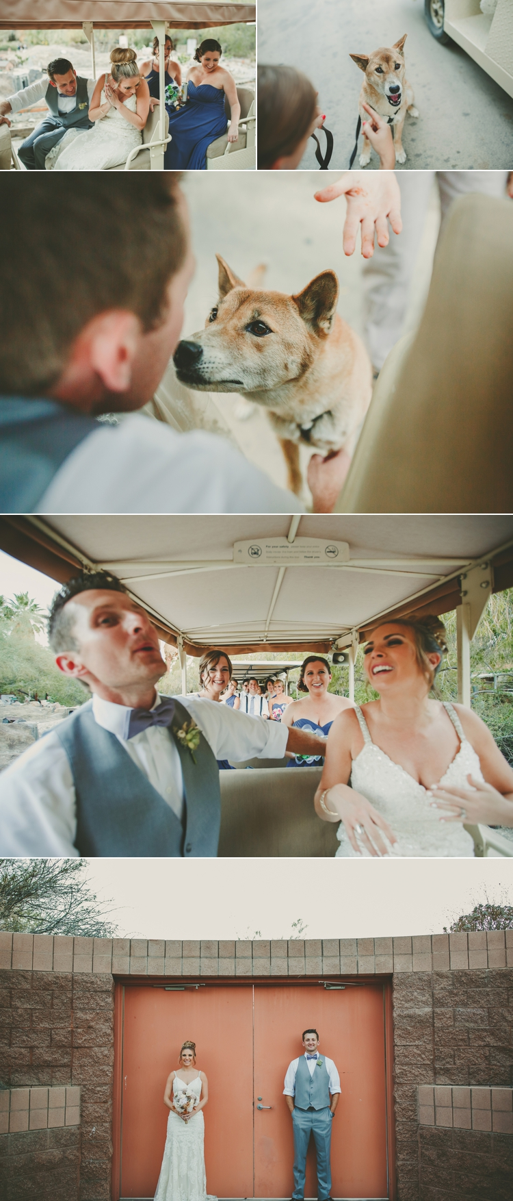 living-desert-zoo-wedding-photos-13