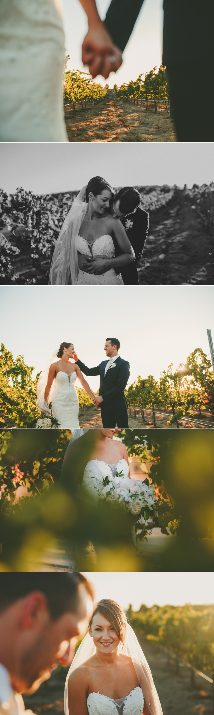 Wedding Photos Mount Palomar Winery Temecula