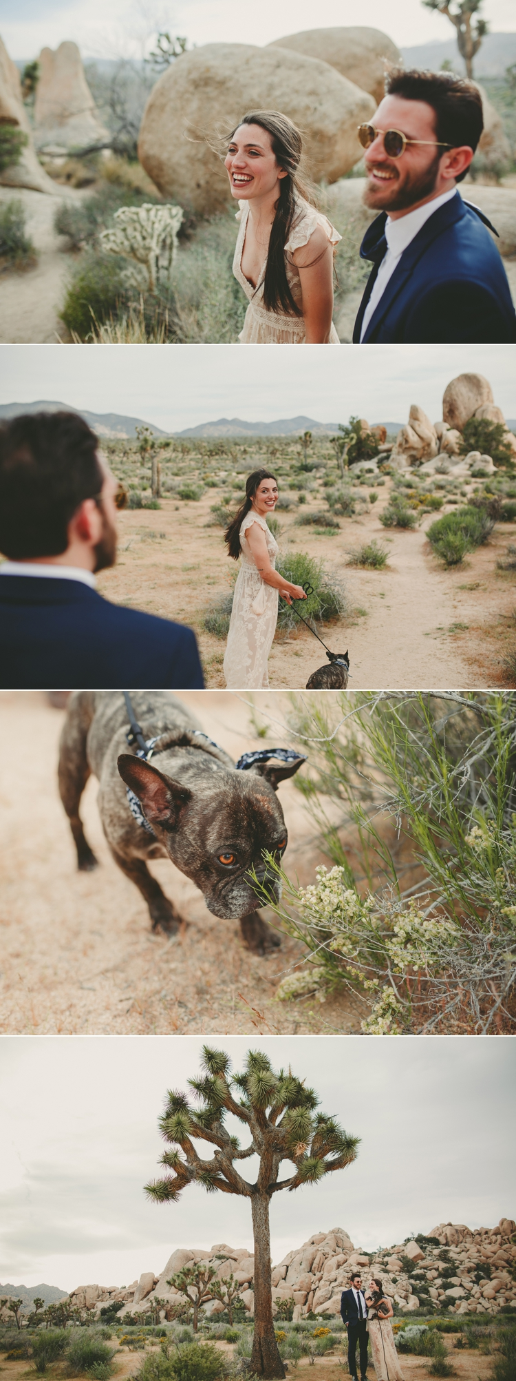 Elopement Photos In Joshua Tree
