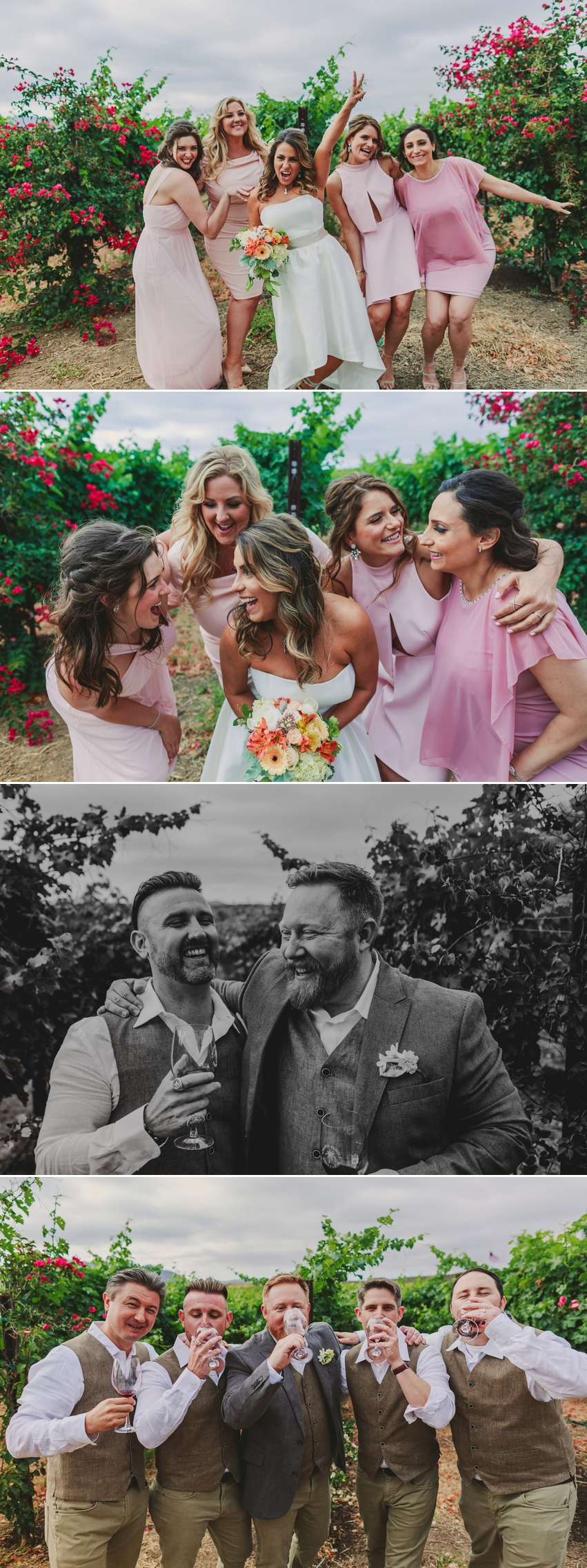 Chapin Family Vineyard Wedding