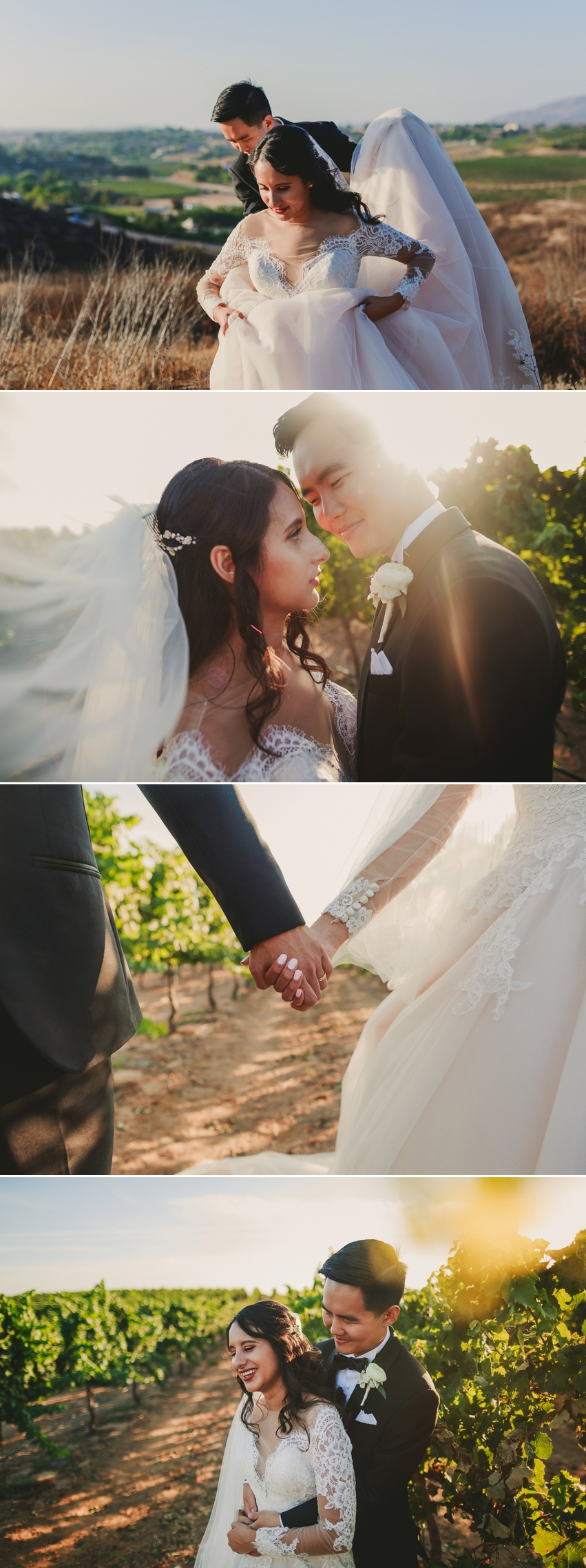 Mount Palpmar Wedding Photography